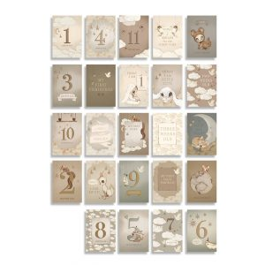 Baby´s First Year Cards 24 set, Mrs. Mighetto